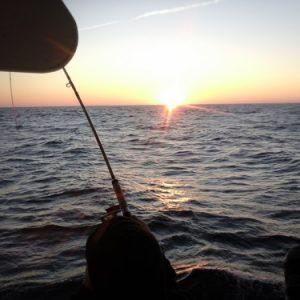 Pesca de Barco
